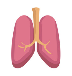 lungs icon human internal organ medical vector image
