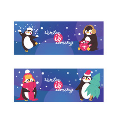 penguin animal in scarf and ear muffs in winter vector image