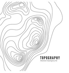 landscape geodesy topography map line texture vector image