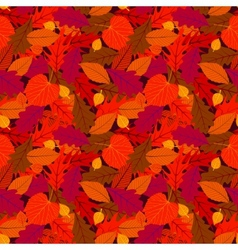 Autumn seamless background with leaves vector image