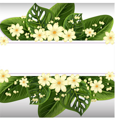 banner design with white flowers and green leaves vector image