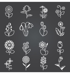 Flowers - set of isolated white line icons vector