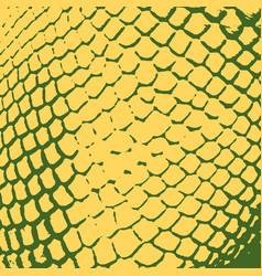 serpent skin texture vector image