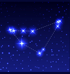 the constellation of capricorn in the night starry vector image