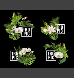 tropic plants banner set vector image