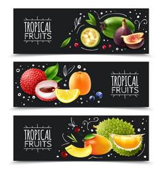 Tropical fruits horizontal banners vector