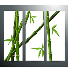 Banners with bamboo vector
