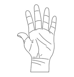 Hand in line style vector
