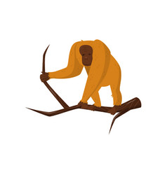 Orangutan standing on wooden branch large monkey vector