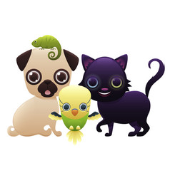 home pets on a white background vector image