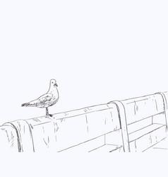 seagull standing on a concrete bridge vector image vector image