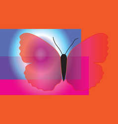 abstract butterfly with translucent wings vector image vector image