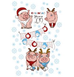 calendar with pigs in christmas costumes vector image