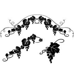 grape decoration vector image vector image