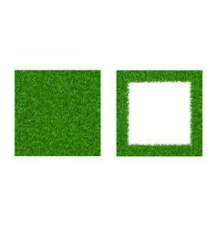 green grass seamless pattern isolated frame 3d vector image