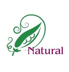 Natural food emblem or label vector