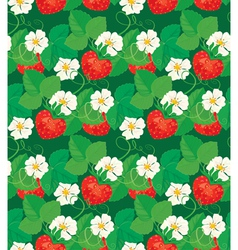 strawberry seamless 1 380 vector image