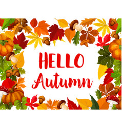 hello autumn greeting card with fall nature frame vector image