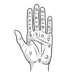 palmistry or chiromancy hand with zodiac signs vector image vector image