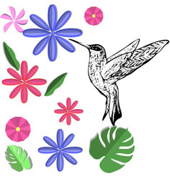 a hand-painted bird of hummingbirds vector image