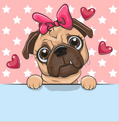 cute cartoon pug dog girl is holding a placard on vector image