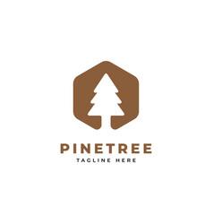 pine tree logo design template vector image