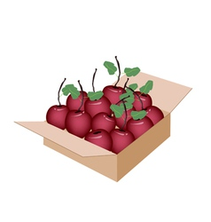 Sweet fresh apple in a shipping box vector