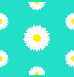 white daisy marguerite chamomile icon cute flower vector image