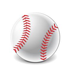 Baseball ball isolated on white vector