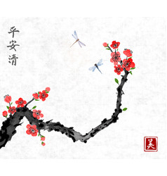 Cherry sakura tree branch in blossom and two vector