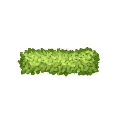 Green grass landscape design element top view vector
