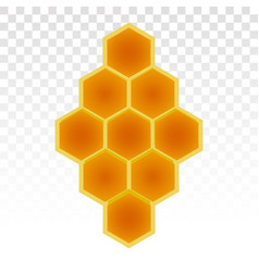 Honeycomb honey comb flat icon with hexagon vector