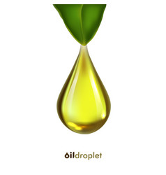 oil drop icon with leaf vector image