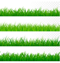 seamless gorisontal grass border green grass vector image