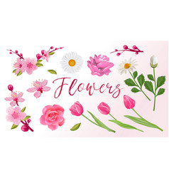 set of spring flowers sakura tulips roses vector image