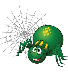 Spider vector image vector image