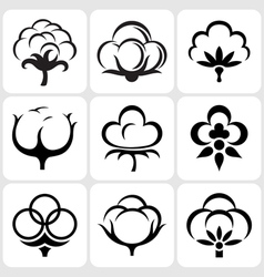 cotton icons set vector image