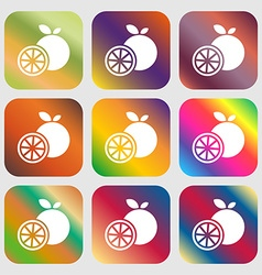 orange icon sign Nine buttons with bright vector image