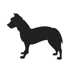 Pitbull Black Silhouette vector image