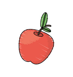 drawing apple fruit food vector image