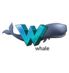 A letter W for whale vector image
