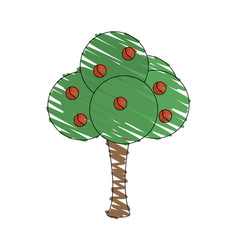 Drawing tree fruit natural vector