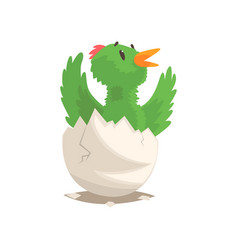 funny bird baby hatching from egg vector image