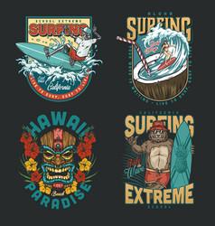 hawaii surfing vintage colorful emblems vector image