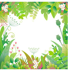 square floral frame with green plants vector image
