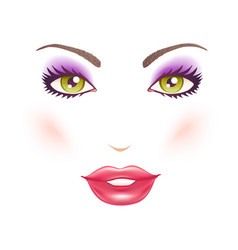 womans face with makeup vector image vector image