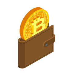 crypto currency purse bitcoin in pouch virtual vector image