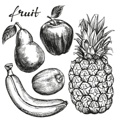 Frui set pear apple banana kiwi pineapple hand vector