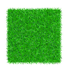 Green grass square isolated on white background 3d vector