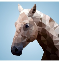 Head of a bay horse in triangular style vector image